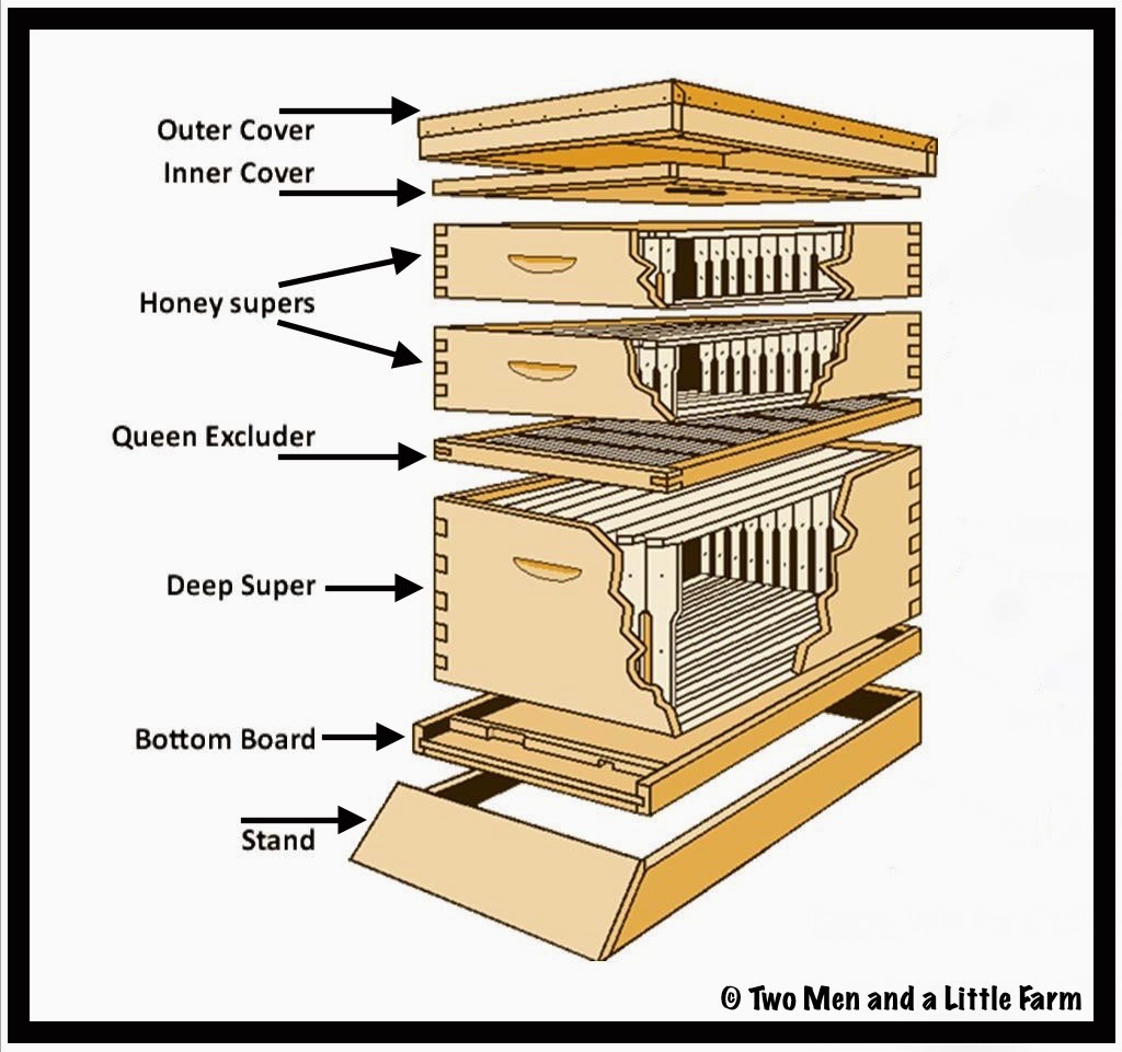 Beekeeping For People Who Do Not Wan To Be Beekepers